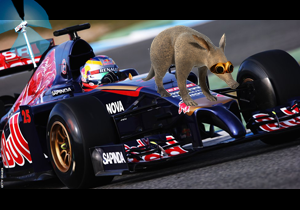 Sebastian Vettel in the new Red Anteater