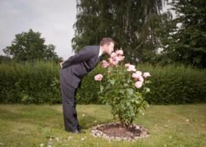 Businessman rose