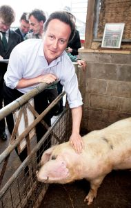 Cameron in happier times, poised to spring