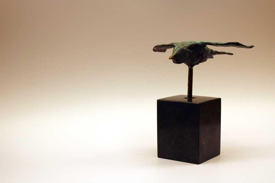 zwaluw - swallow - Evens Pierre - 4