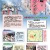 2017年4月2日(日)2017春のコリアマダン / 神奈川県立三ッ池公園  コリア庭園