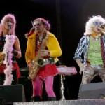 le groupe marcel et son orchestre - 3 membres en concert