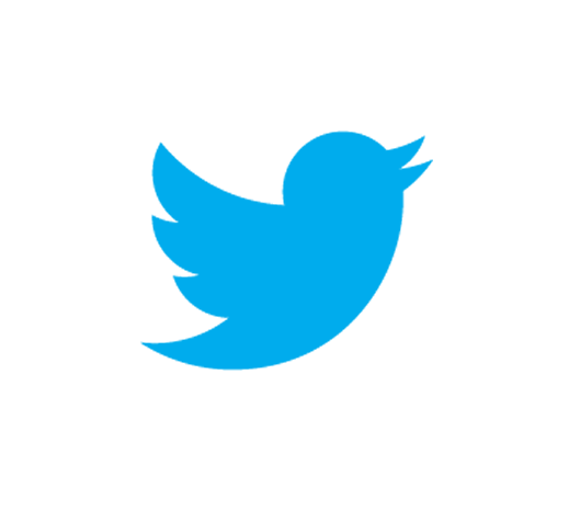 Assessing the Risks: Twitter