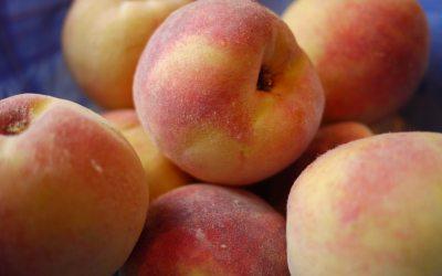 Tool Review: Peach