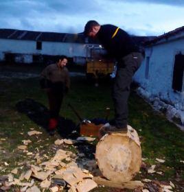 Cortador de troncos en una Finca en Segovia _4