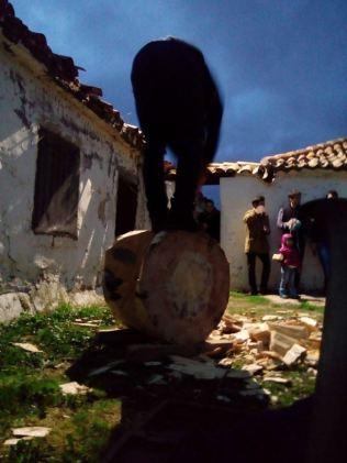 Cortador de troncos en una Finca en Segovia _5