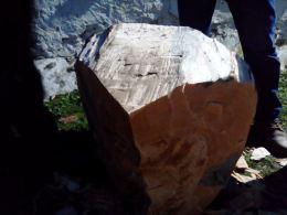 Cortador de troncos en una Finca en Segovia _6
