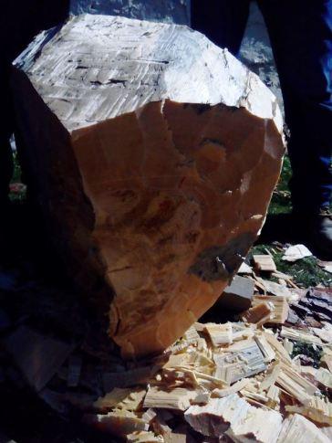 Cortador de troncos en una Finca en Segovia _7