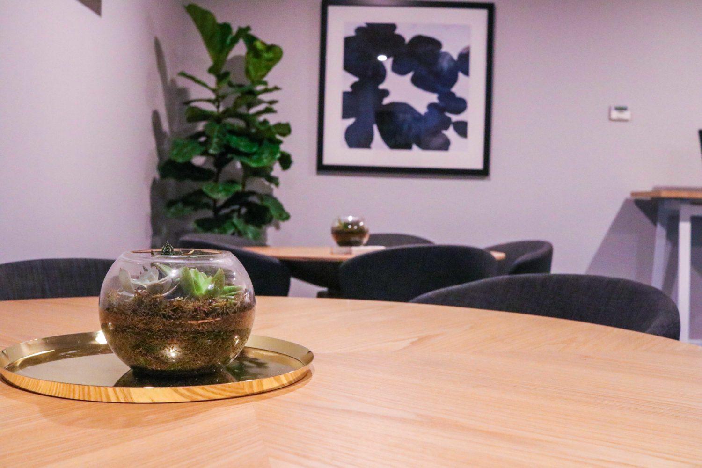 Terrariums and fiddle leaf figs event plants hire melbourne