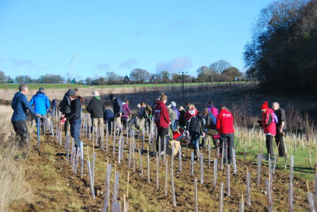 2018 OVO TCV Amersham in Bloom Tree Planting IDigTrees 3 1