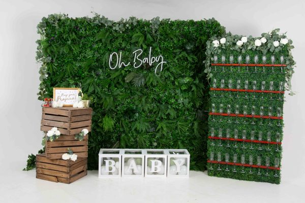 Botanical Baby Shower / Gender Reveal Package