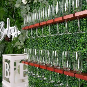 Botanical Baby Shower / Gender Reveal Package