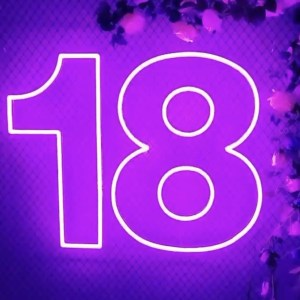 18th Birthday Neon Sign