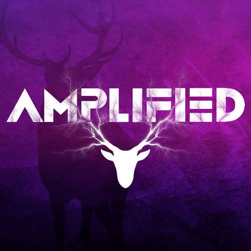 15 Amplified Logo