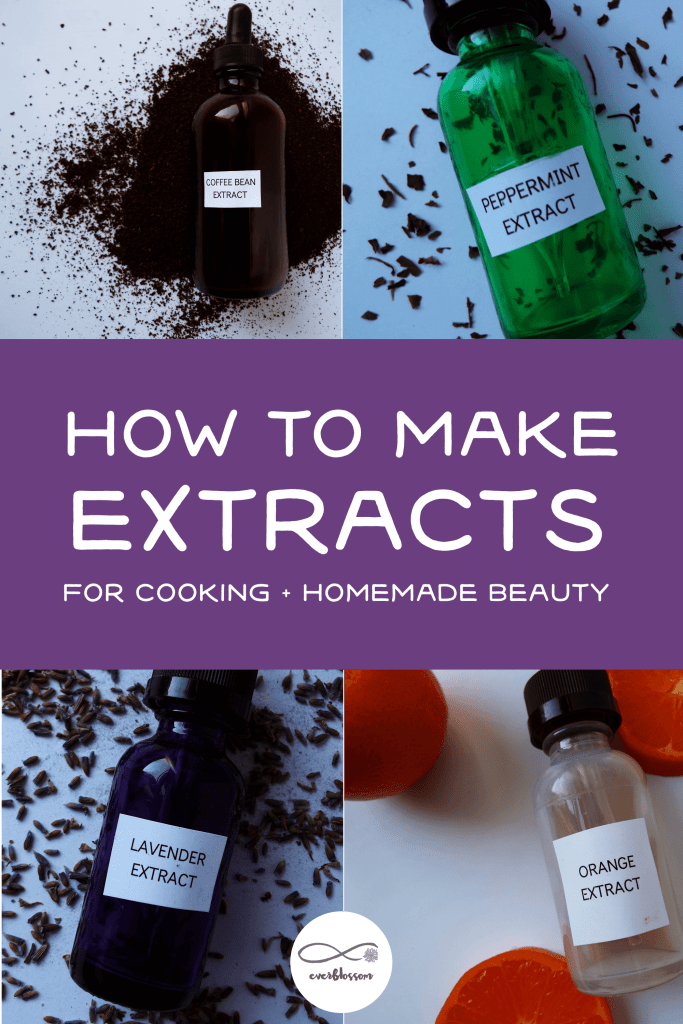 """Homemade extracts with caption: """"how to make extracts for cooking + homemade beauty"""""""