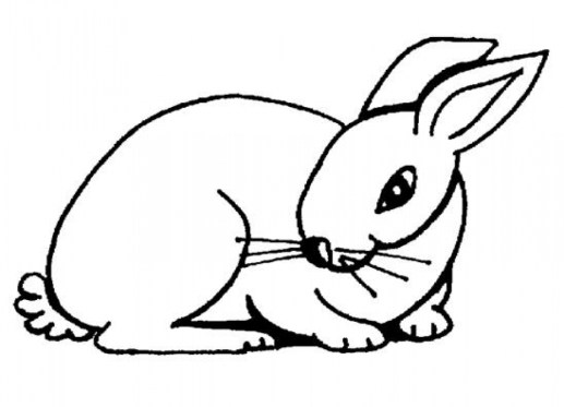 Easy Rabbit Coloring Pages for Preschoolers 8PS18