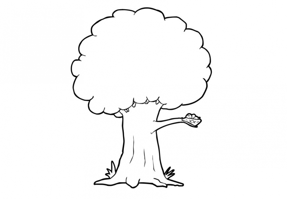 Tree Coloring Pages Free to Print   NU02M