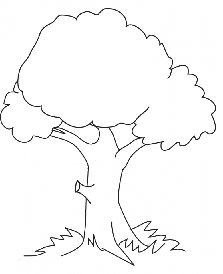 Tree Coloring Pages Online Printable   B6QSA