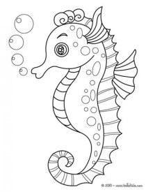 Free Seahorse Coloring Pages 16377