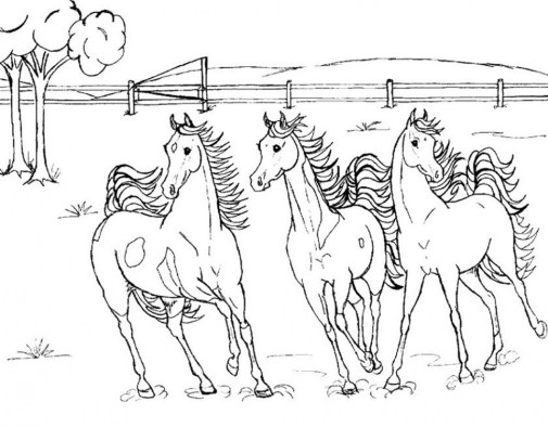 Free Simple Horses Coloring Pages for Children t6gbg