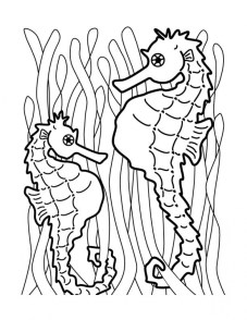 Printable Seahorse Coloring Pages 78757