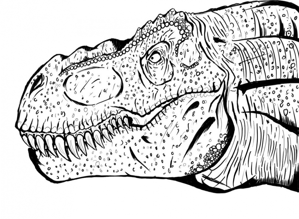 Printable T Rex Coloring Pages   29255