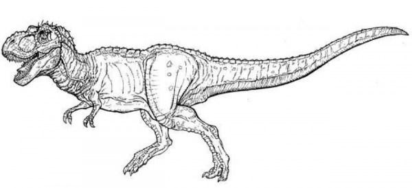 tyrannosaurus rex coloring page # 22