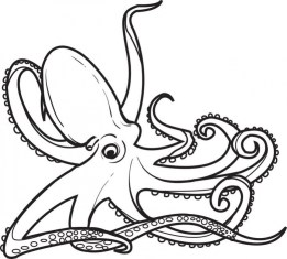 Free Octopus Coloring Pages 2srxq