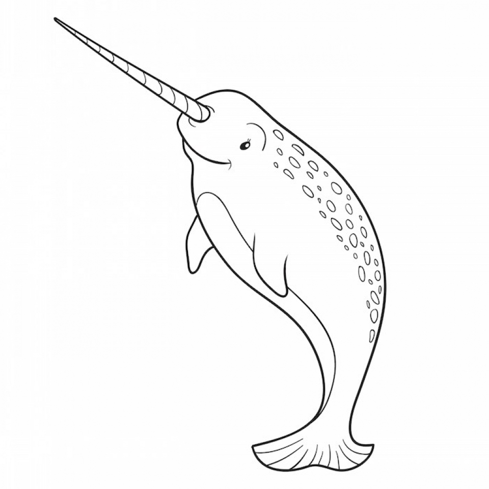 Online Narwhal Coloring Pages   28344
