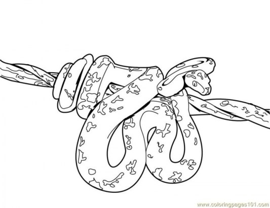 Online Snake Coloring Pages 28344