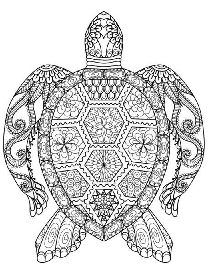 Adults Printable Summer Coloring Pages - 73097