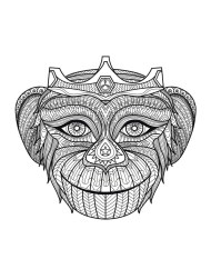 Monkey Coloring Pages for Adults - 067201