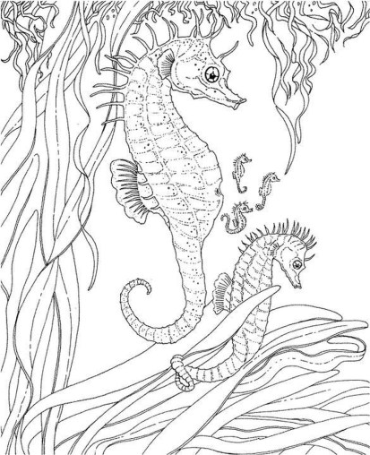 Online Adults Printable of Summer Coloring Sheets - 11672