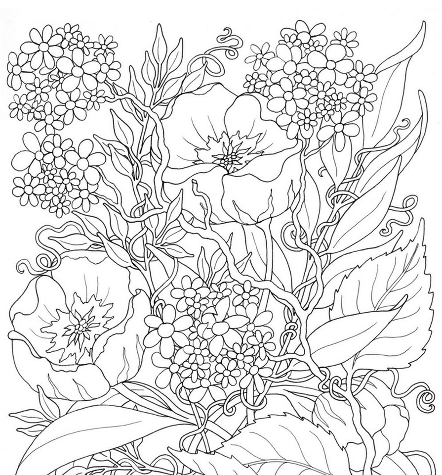 Get This Online Summer Printable Coloring Pages for Adults ...