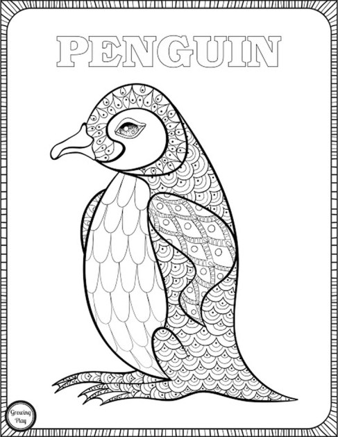 Penguin Coloring Pages for Adults to Print Out - 67291