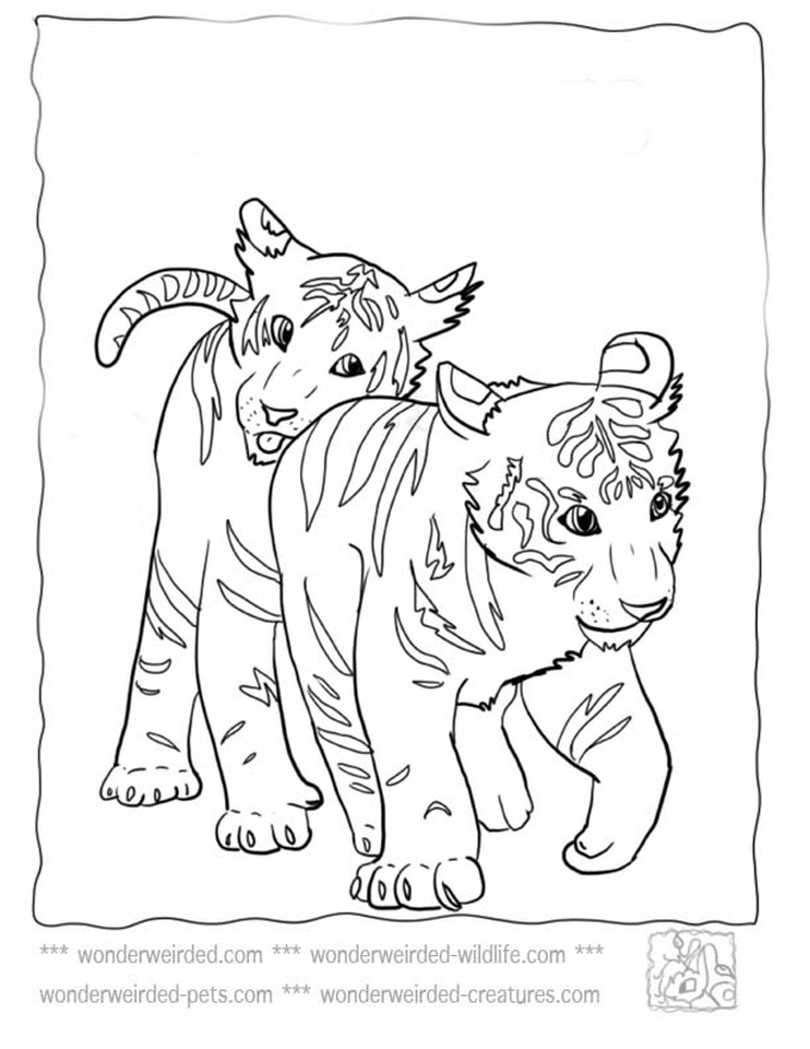 Tiger Coloring Pages to Print for Free - 38901