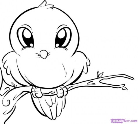 Bird Coloring Pages for Kids 82657
