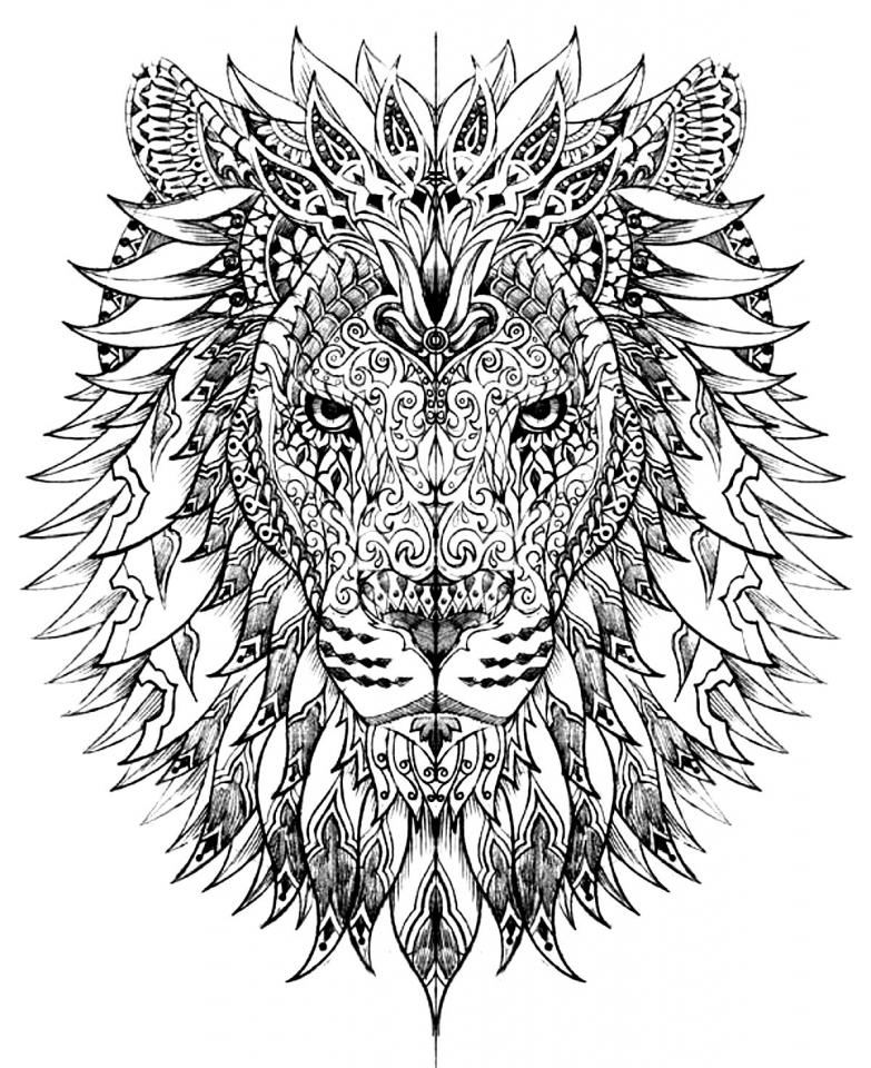Lion Coloring Pages for Adults   86704