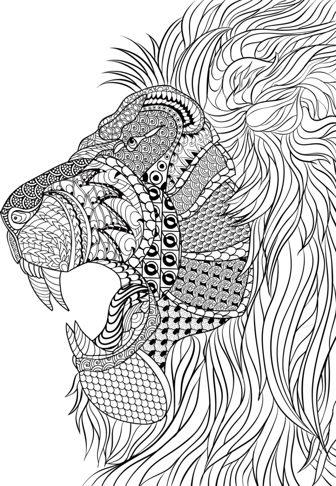 Lion Coloring Pages for Adults Free Printable   66376