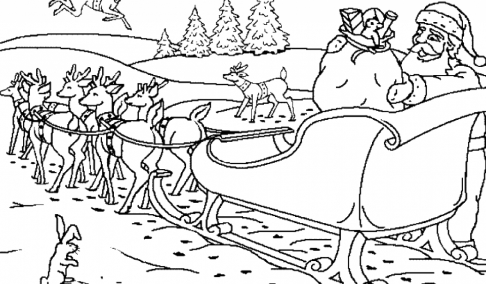 Reindeer Coloring Pages Online   78452
