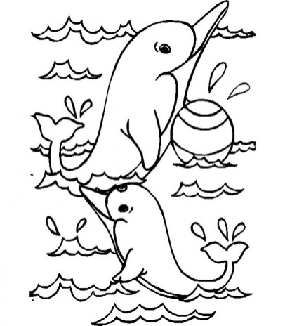 Sea Animals Dolphin Coloring Pages 28193