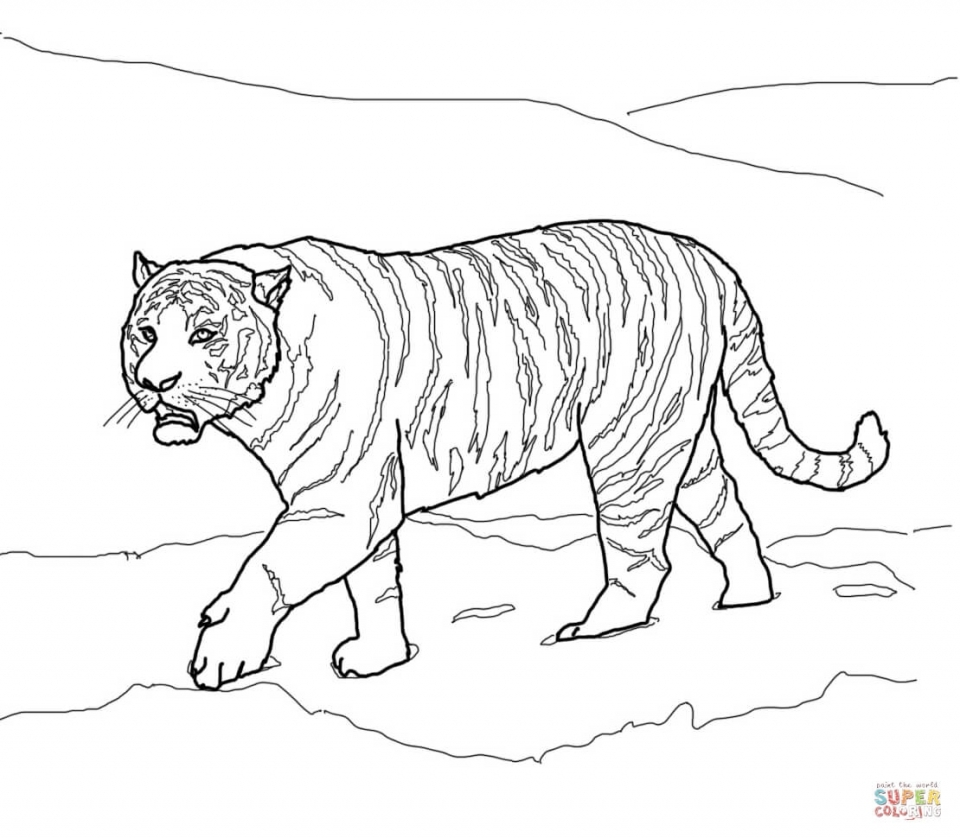 Get This Tiger Coloring Pages Realistic Animal Printables For Adults 41782