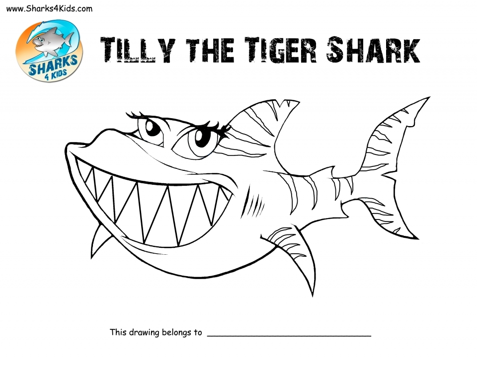 Tiger Shark Coloring Pages   41267