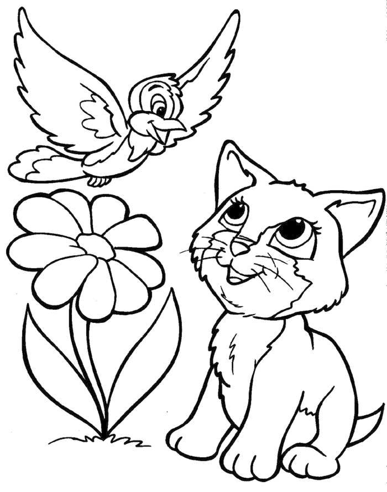 Kitten Coloring Pages Kids Printable - 3sda1 - new