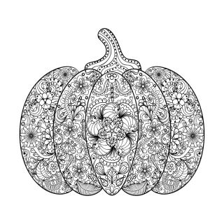 Pumpkin Coloring Pages for Adults Printable - 7cvda