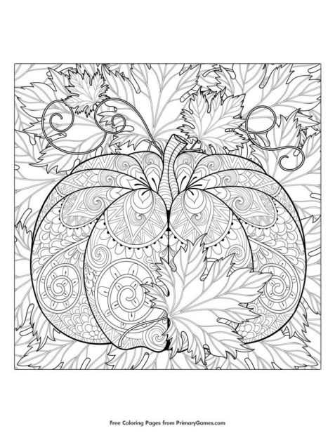Pumpkin Coloring Pages for Adults to Print - ts412