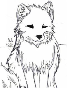 Artic fox coloring pages - 98994