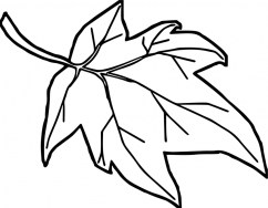autumn leaves coloring pages atdf3