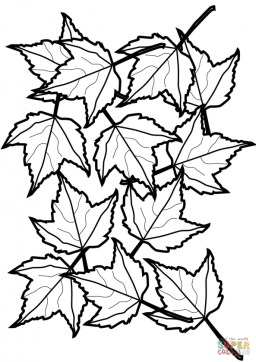 autumn leaves coloring pages atsg4