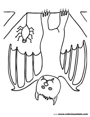 Bat coloring pages preschool 67211